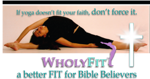 WholyFit Silver Certification Brochure